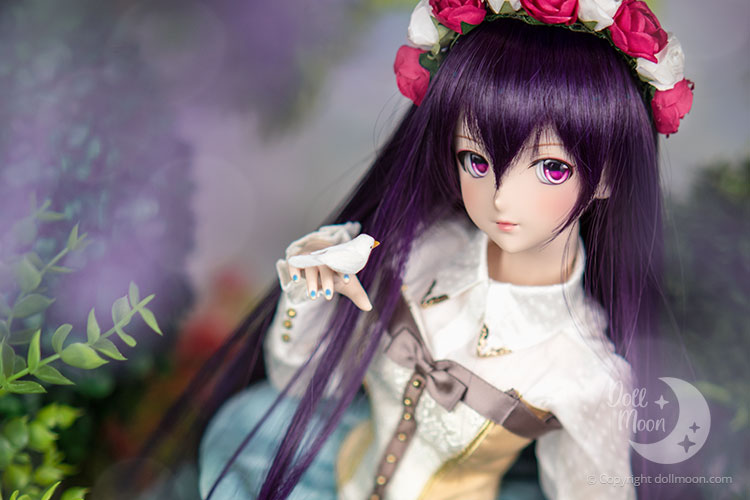 Limited Dollfie Dream are often available through the Volks Lottery.